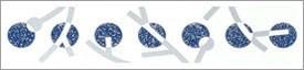 K026/6000 Неаполь синий 25х5,4