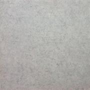 SG612300R Фудзи светло-серый обрезной 60х60
