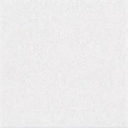 DP605300R Фьорд белый обрезной 60х60х11